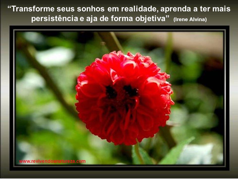 Perceba que nada é bom demais para você, então procure a fé, ela é a fortaleza das sua dúvidas (irene Alvina) www.revivendoanatureza.com