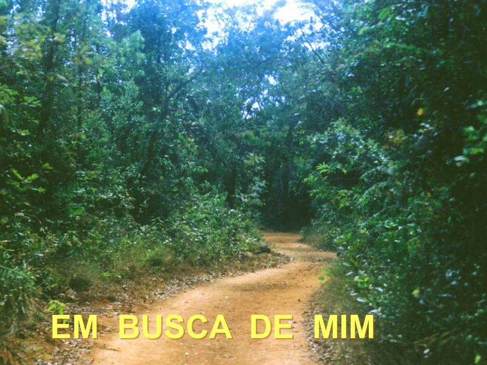 . EM BUSCA DE MIM EM BUSCA DE MIM