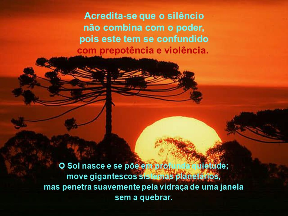 Na natureza tudo acontece com poder e silêncio, com um silêncio poderoso; por vezes, o silêncio é confundido com fraqueza, apatia ou indiferença.