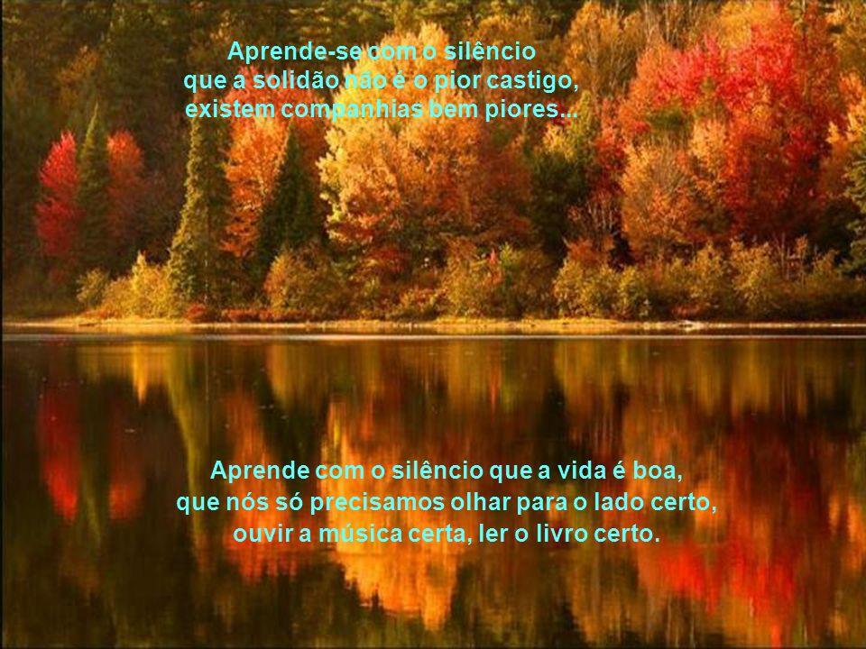 Aprende-se com o silêncio a reparar nas coisas mais simples, valorizar o que é belo, ouvir o que faz algum sentido...