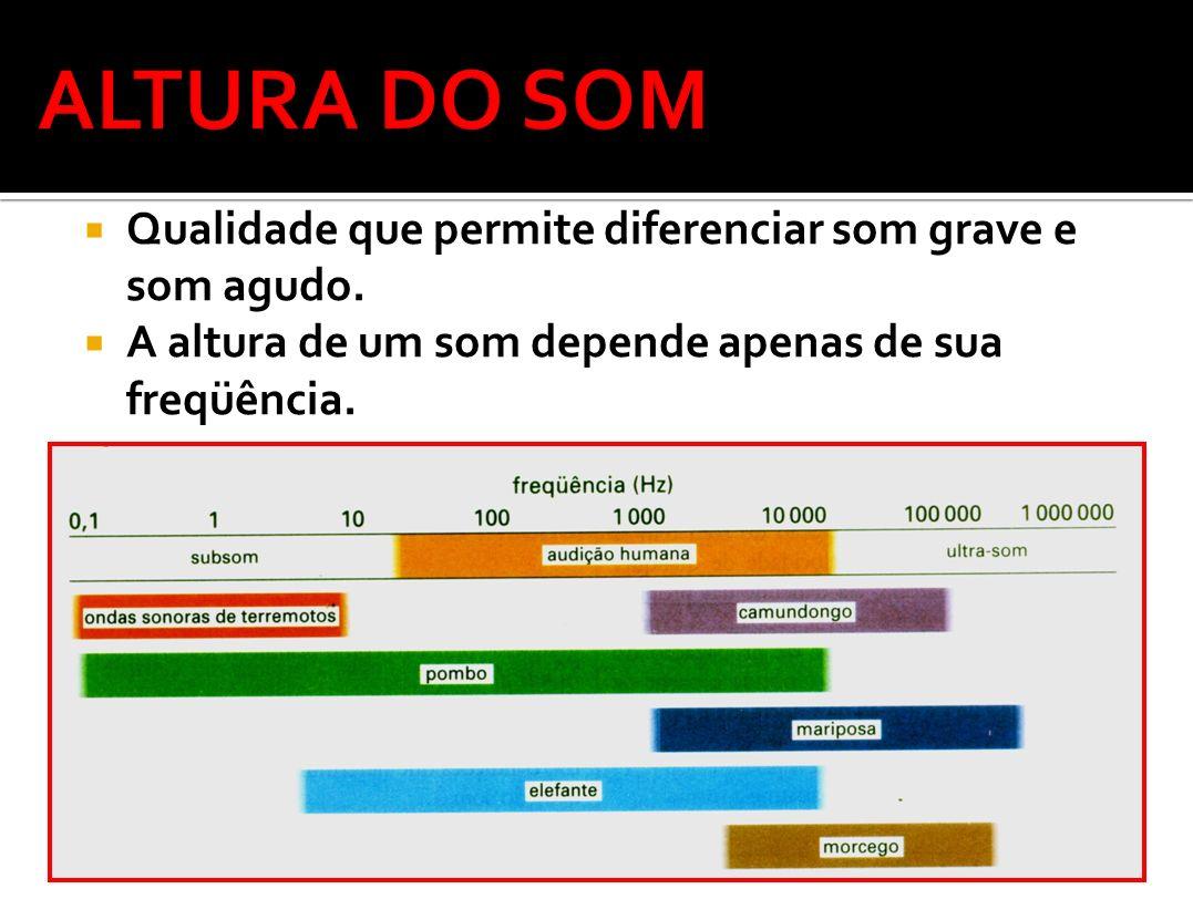 20 Hz20 kHz Som AudívelInfra – SomUltra – Som Altura Som Audível Alto: Baixo: AGUDO GRAVE (Alta freqüência) (baixa freqüência)