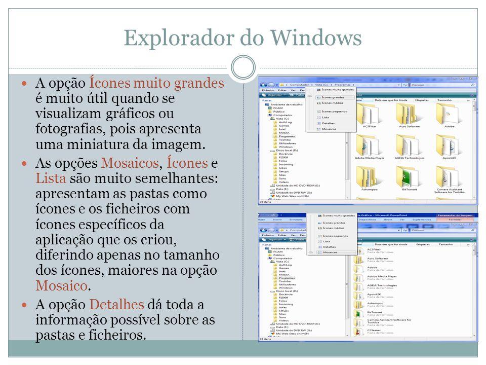 Explorador do Windows A opção Ícones muito grandes é muito útil quando se visualizam gráficos ou fotografias, pois apresenta uma miniatura da imagem.