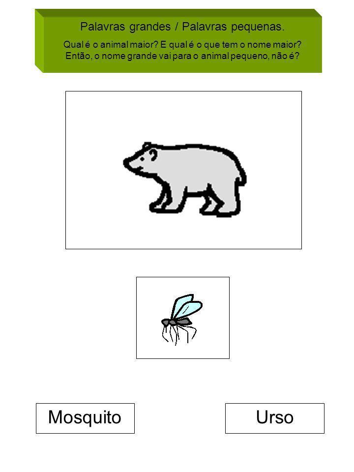 Palavras grandes / Palavras pequenas. Qual é o animal maior? E qual é o que tem o nome maior? Então, o nome grande vai para o animal pequeno, não é? M