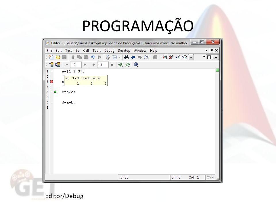 PROGRAMAÇÃO Editor/Debug