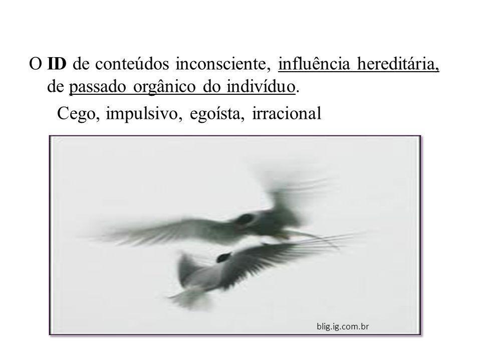 O ID de conteúdos inconsciente, influência hereditária, de passado orgânico do indivíduo. Cego, impulsivo, egoísta, irracional blig.ig.com.br