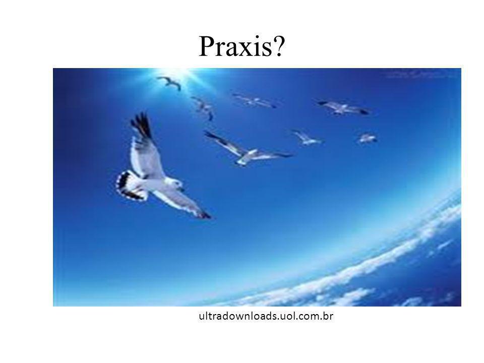 Praxis? ultradownloads.uol.com.br