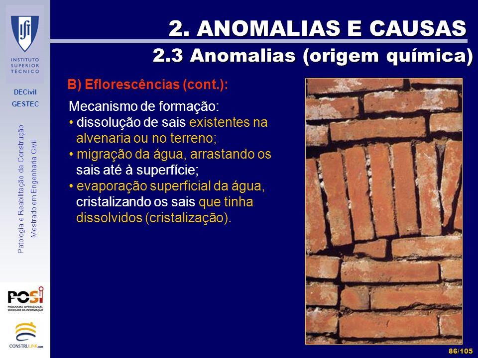 DECivil GESTEC 86/105 Patologia e Reabilitação da Construção Mestrado em Engenharia Civil 2. ANOMALIAS E CAUSAS B) Eflorescências (cont.): 2.3 Anomali