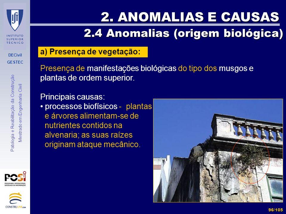 DECivil GESTEC 96/105 Patologia e Reabilitação da Construção Mestrado em Engenharia Civil 2. ANOMALIAS E CAUSAS 2.4 Anomalias (origem biológica) 2.4 A