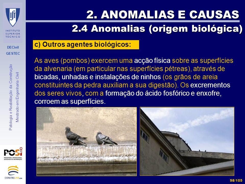 DECivil GESTEC 98/105 Patologia e Reabilitação da Construção Mestrado em Engenharia Civil 2. ANOMALIAS E CAUSAS 2.4 Anomalias (origem biológica) 2.4 A