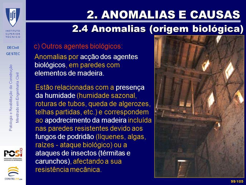 DECivil GESTEC 99/105 Patologia e Reabilitação da Construção Mestrado em Engenharia Civil 2. ANOMALIAS E CAUSAS 2.4 Anomalias (origem biológica) 2.4 A