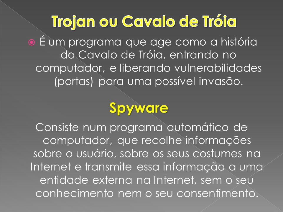 É um programa que age como a história do Cavalo de Tróia, entrando no computador, e liberando vulnerabilidades (portas) para uma possível invasão. Spy