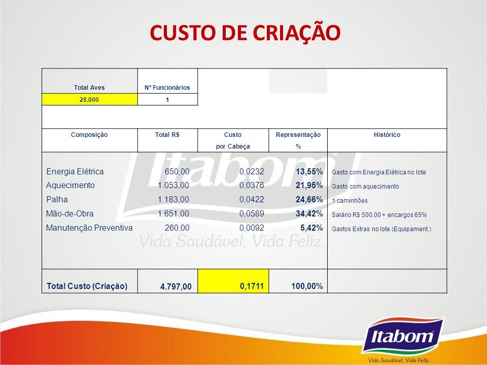 CUSTO DE CRIAÇÃO Total AvesNº Funcionários 28.0001 ComposiçãoTotal R$CustoRepresentaçãoHistórico por Cabeça% Energia Elétrica 650,000,023213,55% Gasto com Energia Elétrica no lote Aquecimento 1.053,000,037621,95% Gasto com aquecimento Palha 1.183,000,042224,66% 1 caminhões Mão-de-Obra 1.651,000,058934,42% Salário R$ 500,00 + encargos 65% Manutenção Preventiva 260,000,00925,42% Gastos Extras no lote (Equipament.) Total Custo (Criação) 4.797,000,1711100,00%