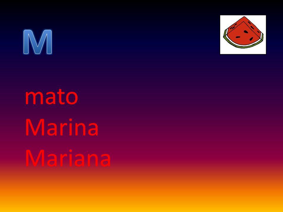 mato Marina Mariana