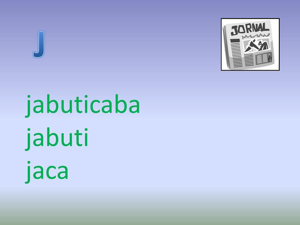 jabuticaba jabuti jaca