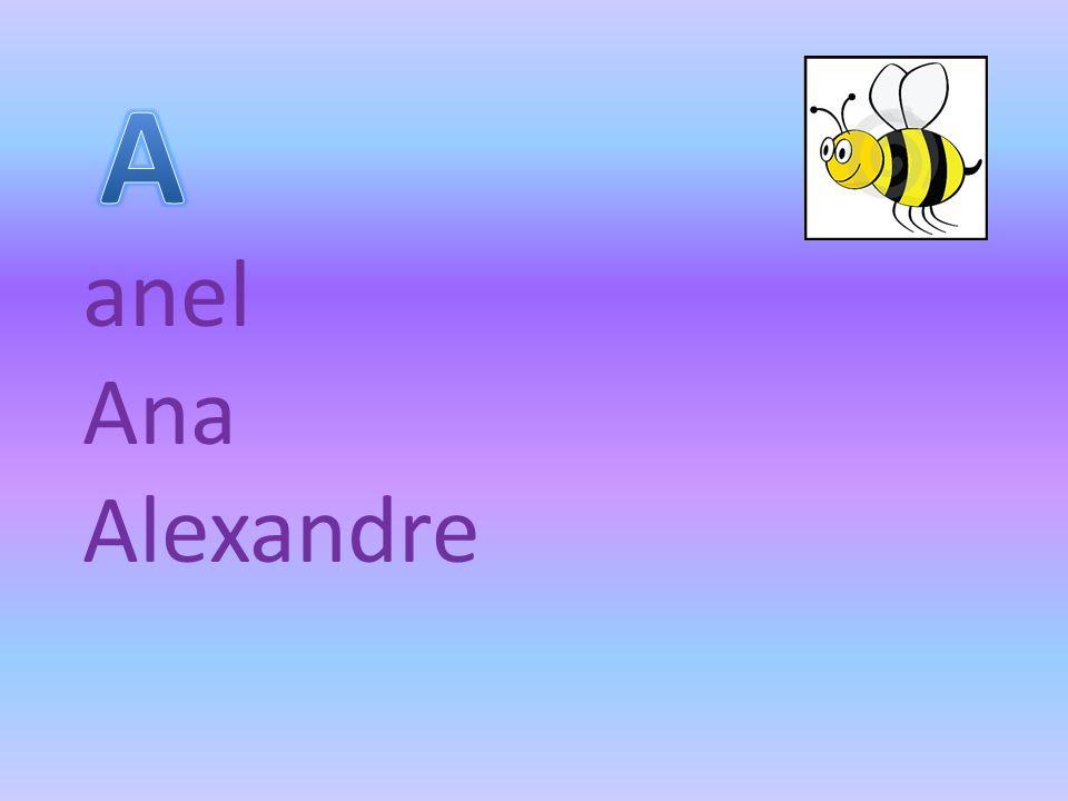 anel Ana Alexandre