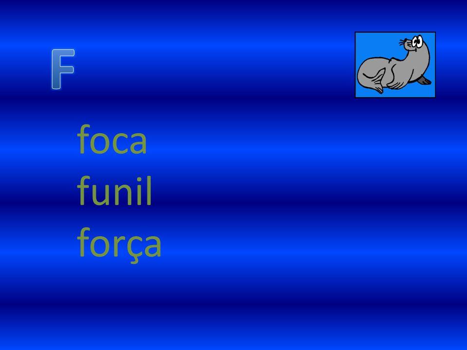 foca funil força