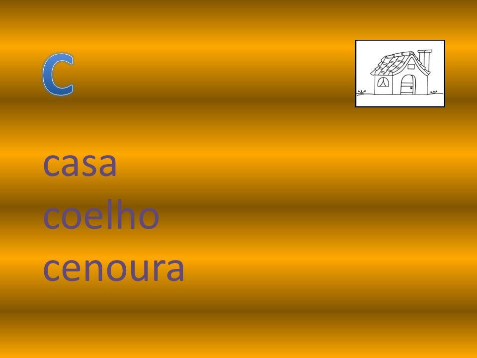 casa coelho cenoura