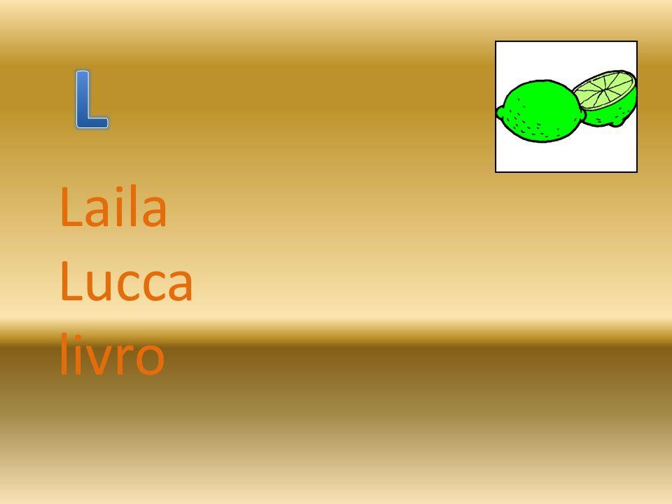 Laila Lucca livro