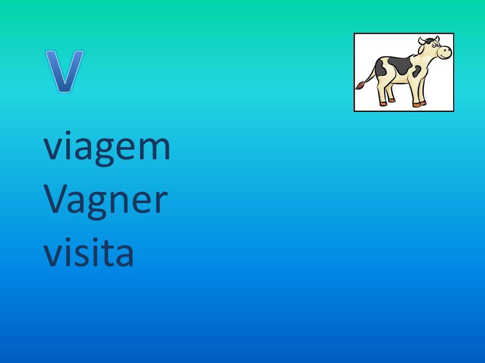 viagem Vagner visita