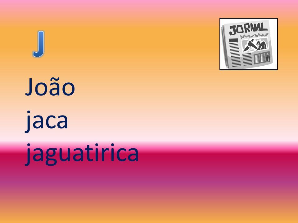 João jaca jaguatirica