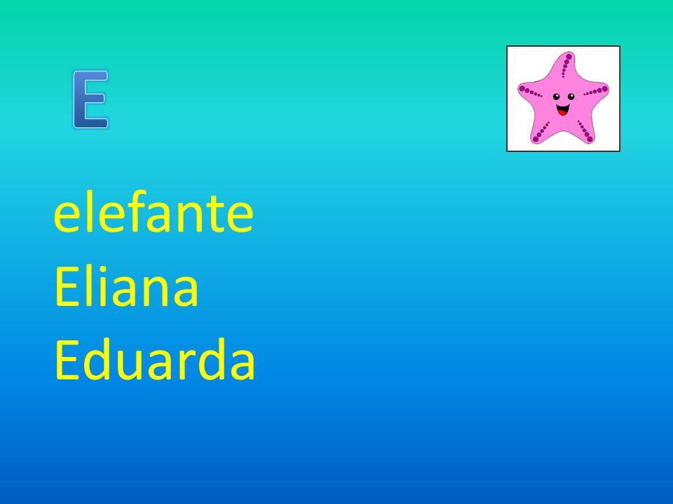 elefante Eliana Eduarda