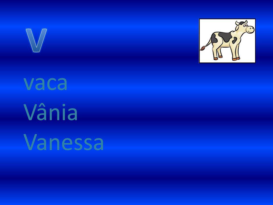 vaca Vânia Vanessa