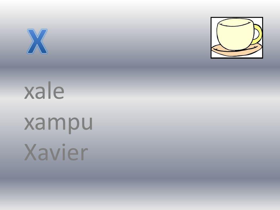 xale xampu Xavier