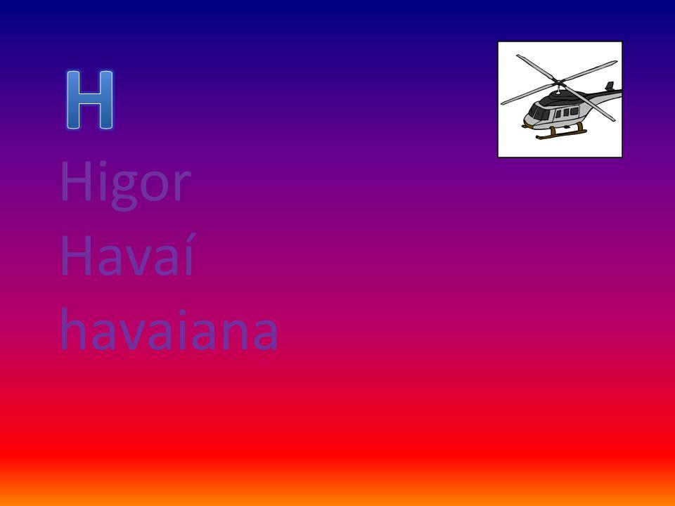 Higor Havaí havaiana