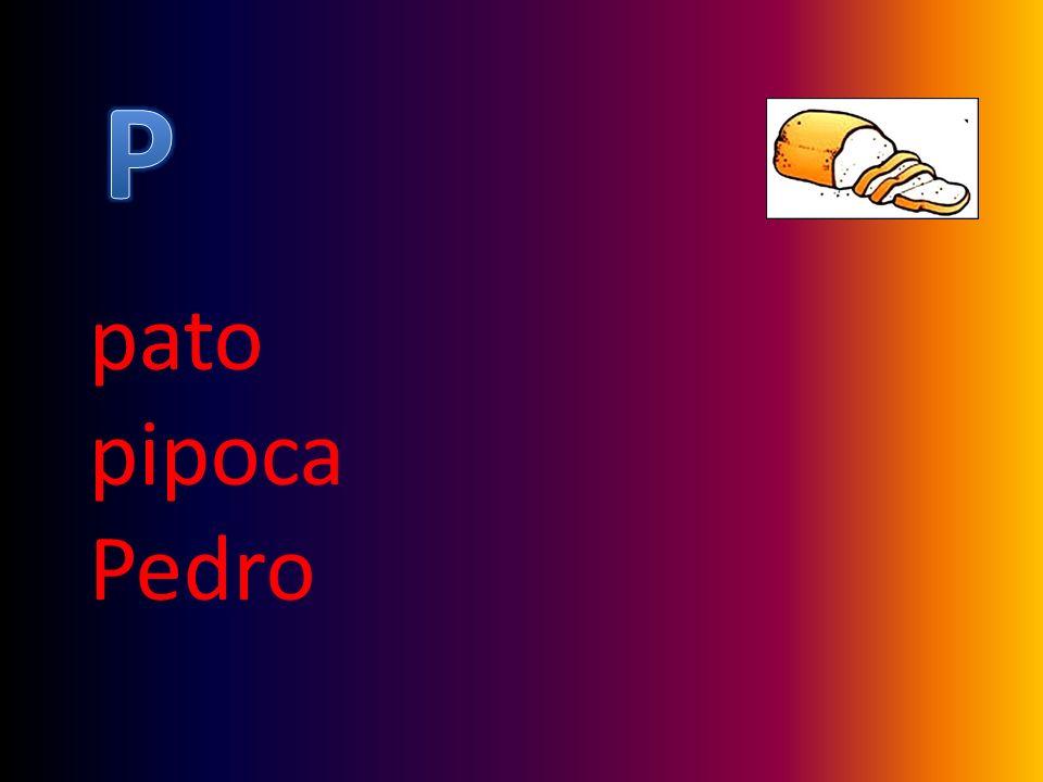 pato pipoca Pedro