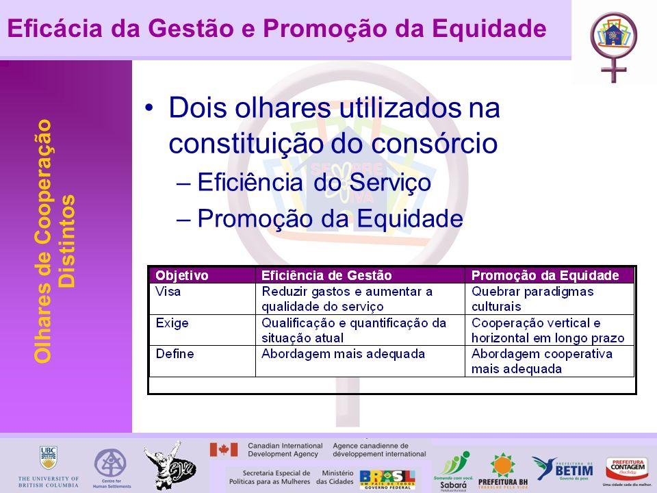 Eficácia da Gestão e Promoção da Equidade Olhares de Cooperação Distintos Dois olhares utilizados na constituição do consórcio –Eficiência do Serviço –Promoção da Equidade