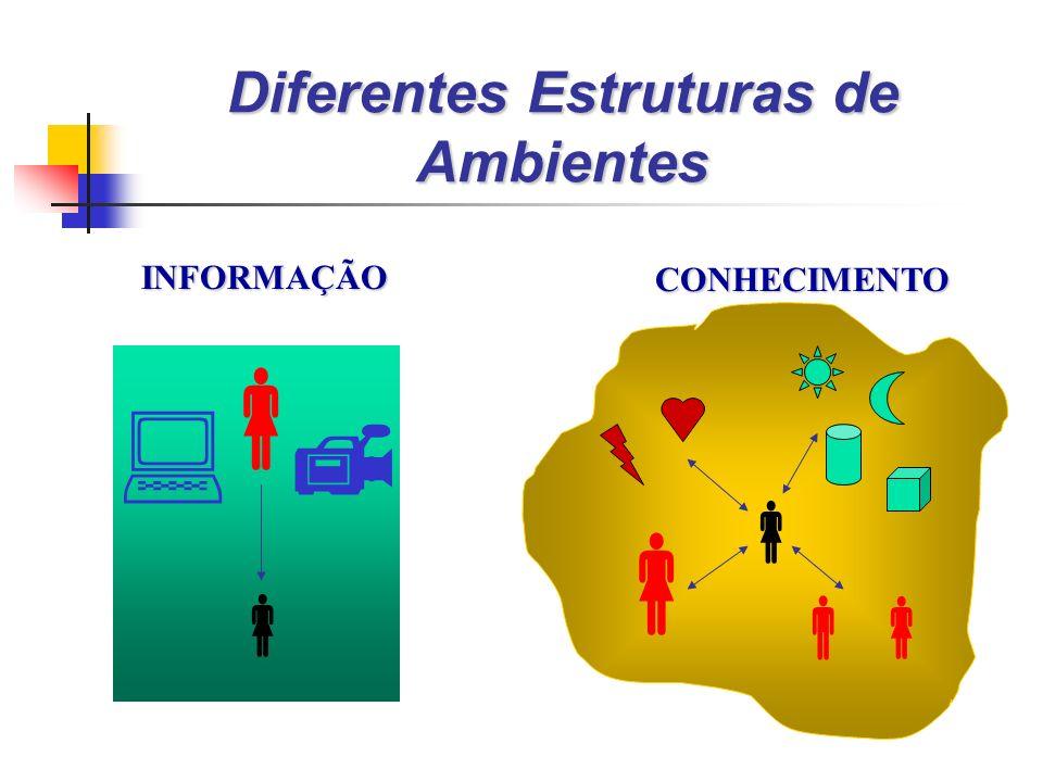 INFORMAÇÃO CONHECIMENTO Diferentes Estruturas de Ambientes