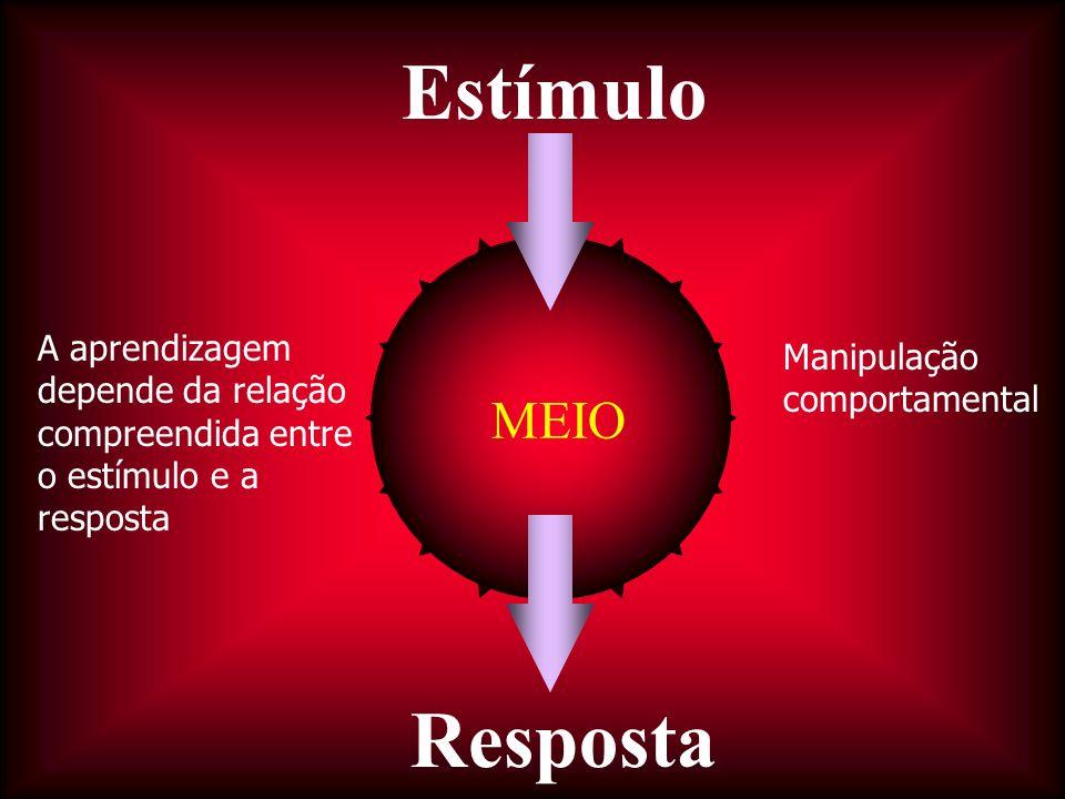MEIO Estímulo Resposta A aprendizagem depende da relação compreendida entre o estímulo e a resposta Manipulação comportamental