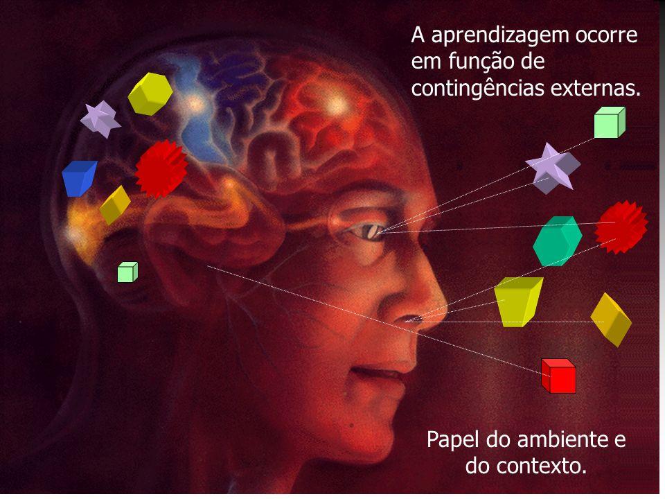 A aprendizagem ocorre em função de contingências externas. Papel do ambiente e do contexto.