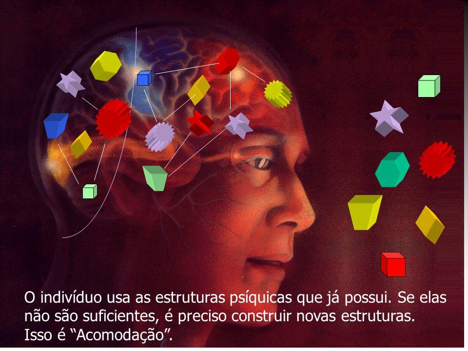 O indivíduo usa as estruturas psíquicas que já possui.