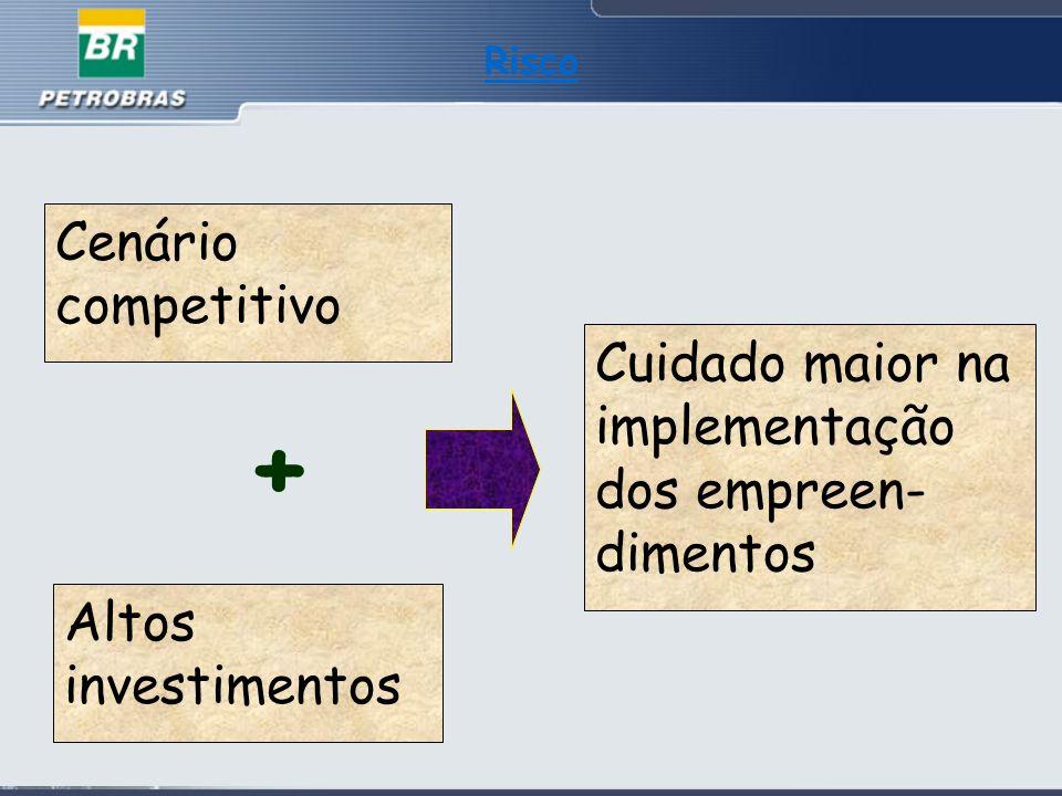 Risco Cenário competitivo Cuidado maior na implementação dos empreen- dimentos Altos investimentos +