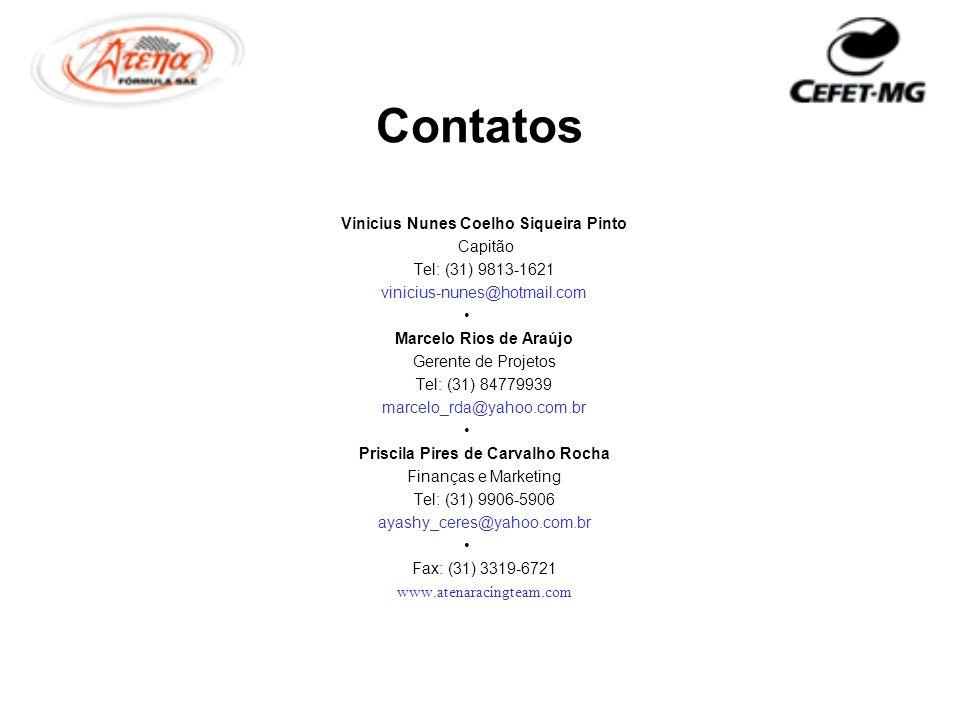Contatos Vinicius Nunes Coelho Siqueira Pinto Capitão Tel: (31) 9813-1621 vinicius-nunes@hotmail.com Marcelo Rios de Araújo Gerente de Projetos Tel: (