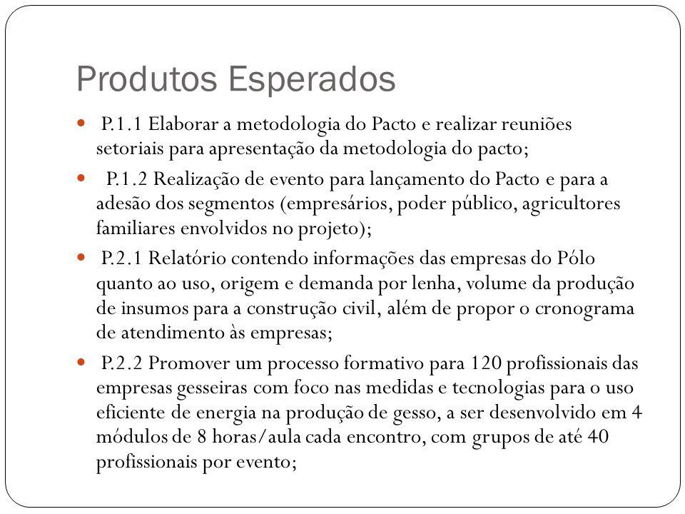 P.2.2.1 Promover no mínimo, uma visita técnica à Unidade Demonstrativa para a troca de informações envolvendo cada empresa beneficiária; P.2.2.2.