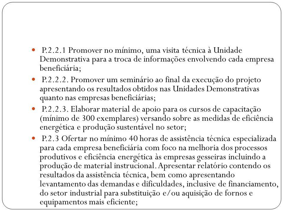 P.3.1 Unidade Demonstrativa (UD) implementada; P.4.1 Coordenador técnico e financeiro atuando para operacionalização do projeto; P.4.1.2 Apoio administrativo atuando para plena execução do projeto; P.4.1.3 Engenheiros e Consultores atuando para obtenção dos resultados estabelecidos pelo projeto; P.4.2.1 Veículo; P.4.2.2 Custeio de diárias, deslocamentos, manutenção de veículo, material de consumo, custos diretos do projeto de telefone e registro de ART efetivados.
