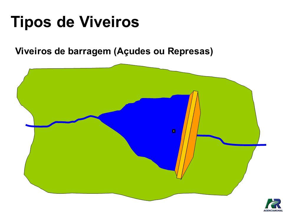Tipos de Viveiros Viveiros de barragem (Açudes ou Represas)