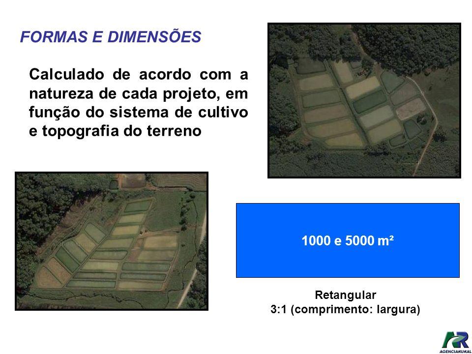 FORMAS E DIMENSÕES Calculado de acordo com a natureza de cada projeto, em função do sistema de cultivo e topografia do terreno 1000 e 5000 m² Retangul
