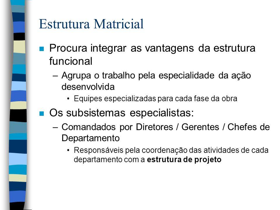 Estrutura Matricial n Procura integrar as vantagens da estrutura funcional –Agrupa o trabalho pela especialidade da ação desenvolvida Equipes especial