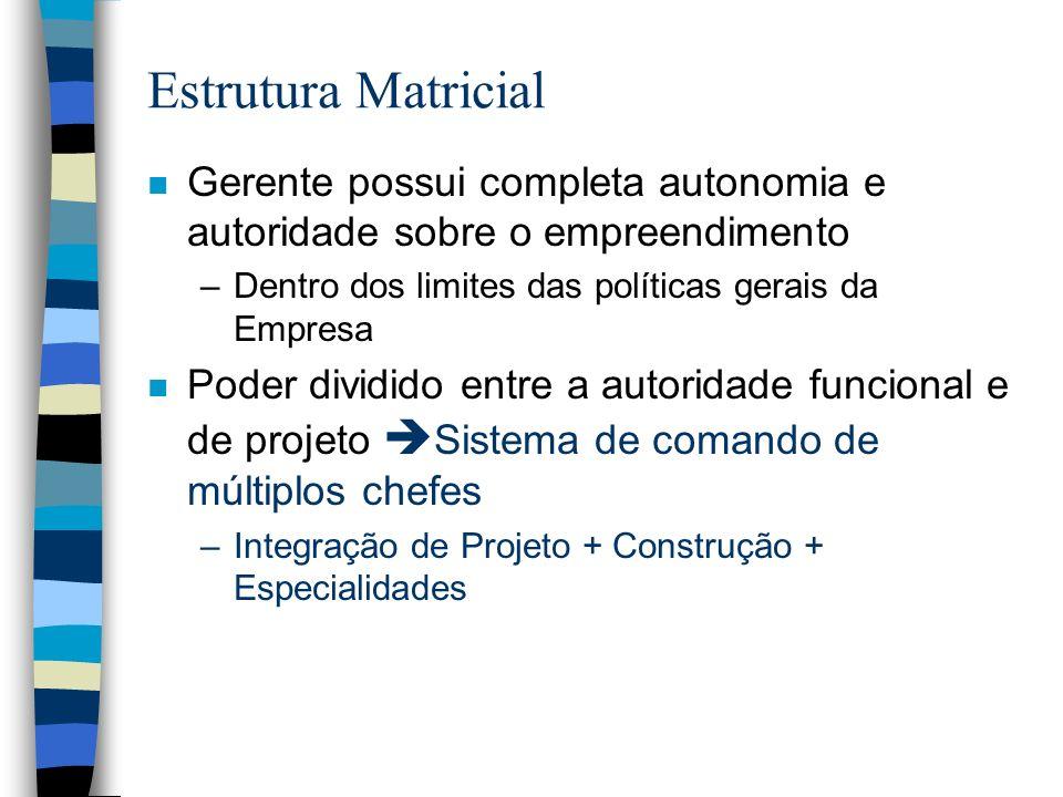 Estrutura Matricial n Gerente possui completa autonomia e autoridade sobre o empreendimento –Dentro dos limites das políticas gerais da Empresa n Pode