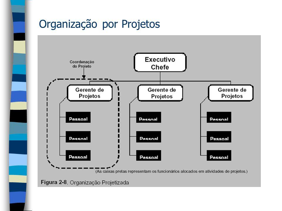 Organização por Projetos