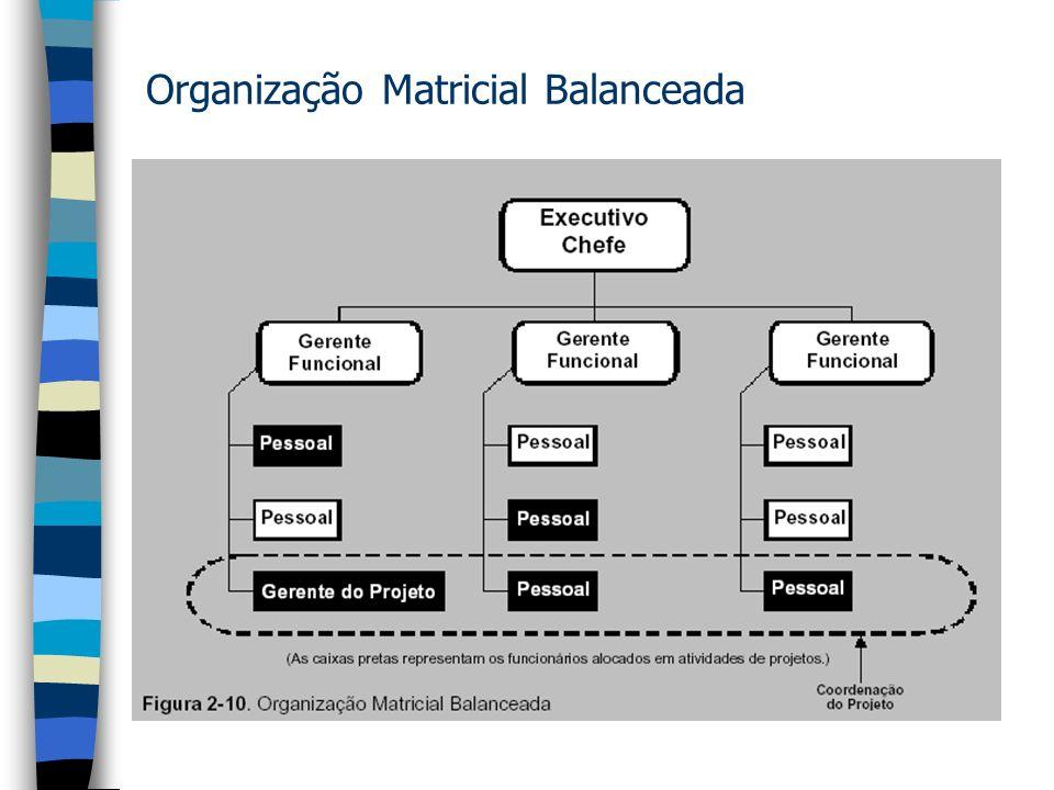 Organização Matricial Balanceada