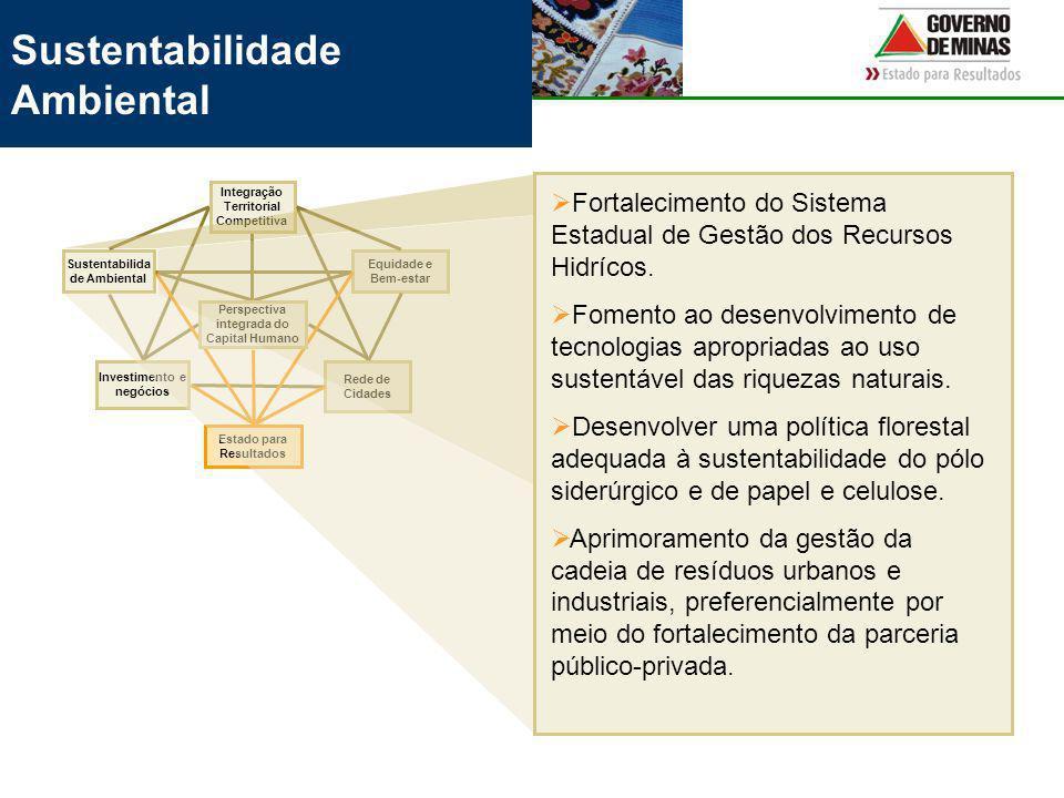 Sustentabilidade Ambiental Rede de Cidades Equidade e Bem-estar Investimento e negócios Integração Territorial Competitiva Sustentabilida de Ambiental Estado para Resultados Perspectiva integrada do Capital Humano Fortalecimento do Sistema Estadual de Gestão dos Recursos Hidrícos.
