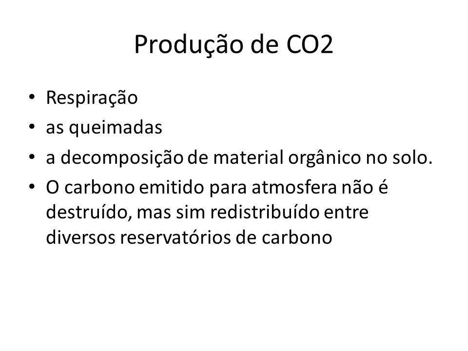 Produção de CO2 Respiração as queimadas a decomposição de material orgânico no solo.