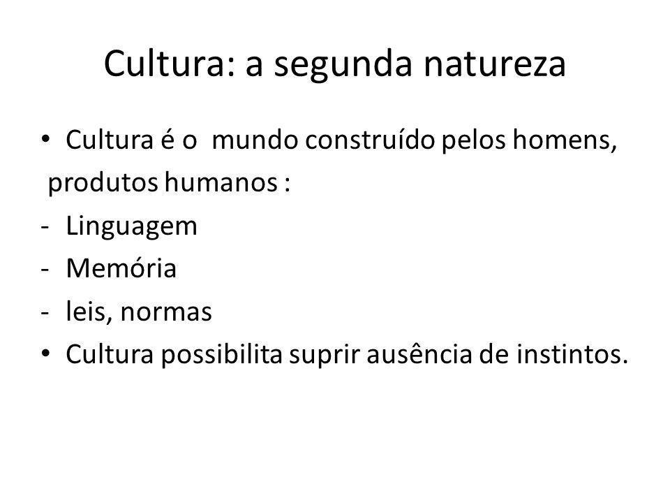 Cultura: a segunda natureza Cultura é o mundo construído pelos homens, produtos humanos : -Linguagem -Memória -leis, normas Cultura possibilita suprir ausência de instintos.