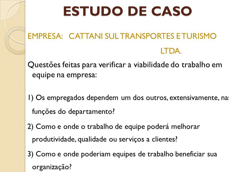 ESTUDO DE CASO EMPRESA: CATTANI SUL TRANSPORTES E TURISMO LTDA. Questões feitas para verificar a viabilidade do trabalho em equipe na empresa: 1) Os e