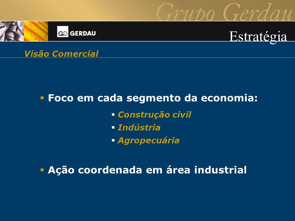 Visão Comercial Foco em cada segmento da economia: Construção civil Indústria Agropecuária Ação coordenada em área industrial Estratégia