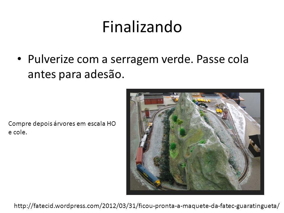 Finalizando Pulverize com a serragem verde. Passe cola antes para adesão. Compre depois árvores em escala HO e cole. http://fatecid.wordpress.com/2012